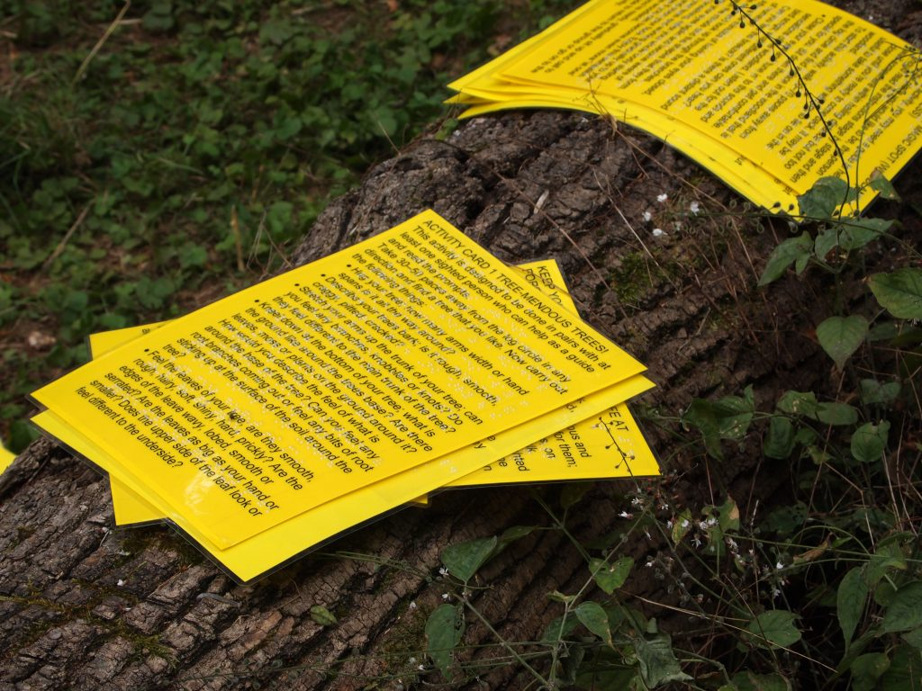 a close up of activity sheets in print and braise on a log in the woods.
