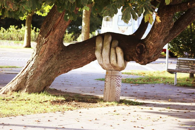 Image shows sculpture of a wooden hand supporting a low-hanging branch of a tree in a park.