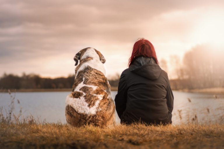 Dog and red-headed woman sit side by side on a river bank woth their backs to the camera.