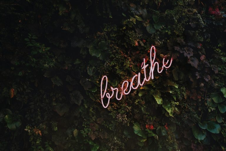 A neon pink sign on a bed of green foliage, says 'breathe'.