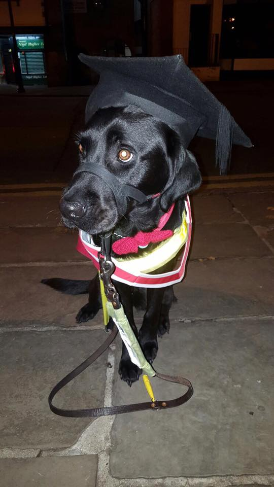 Photo of Jazzy in gown and mortar board.